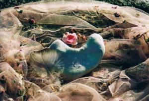 Bild: Stein mit Rose